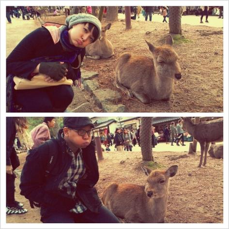Say Deer!