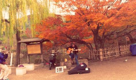 Kyoto - Maruyama Park musician