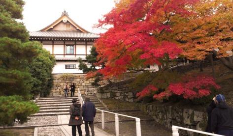 Kyoto - Temple
