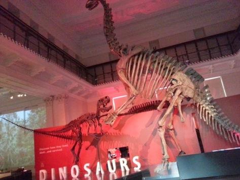 Aussie Museum - tall