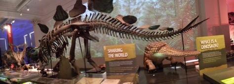 Aussie Museum - wide